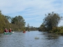 A Paddle down the Cornwallis River